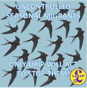 ukip-swallows